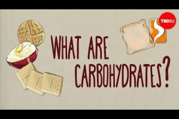 How do carbohydrates impact your health - Richard J Wood - Weunitemusic.com